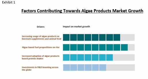 algae products market