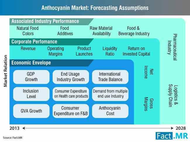 anthocyanin market forecasting assumptions