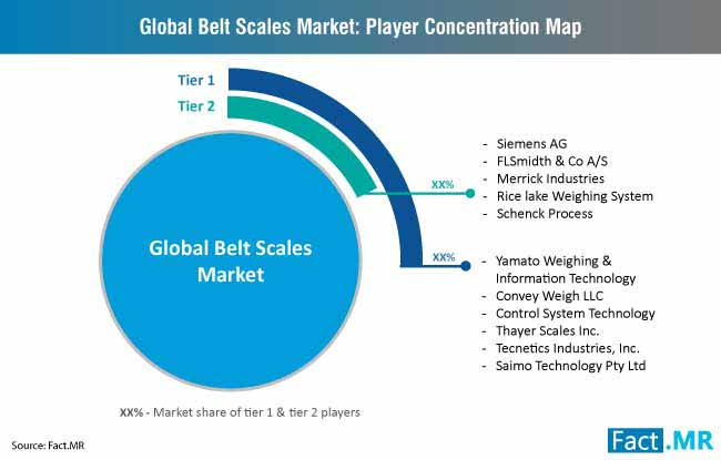 belt scales market player concentration map