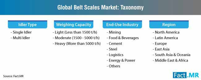 belt scales market taxonomy
