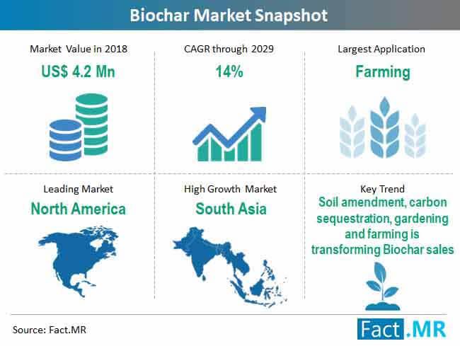 biochar market snapshot