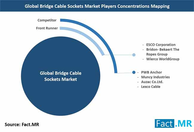 bridge cable sockets market players concentrations mapping