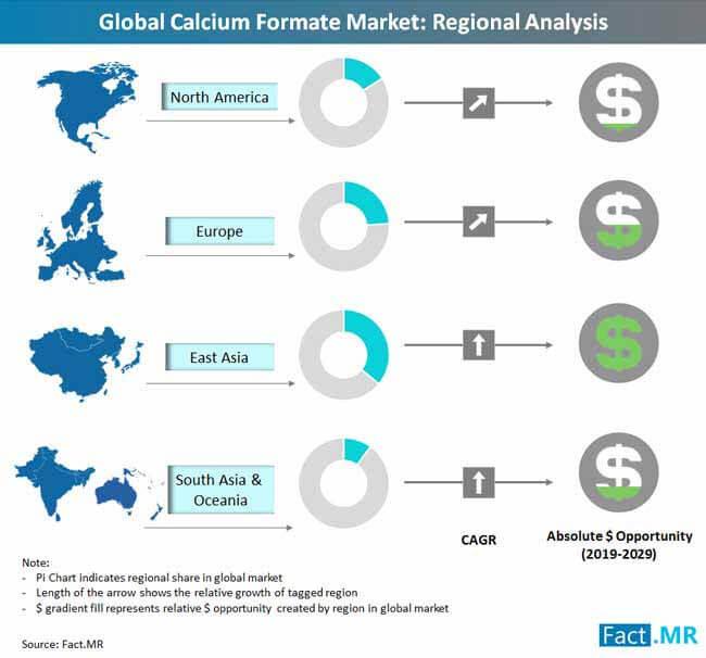 calcium formate market regional analysis