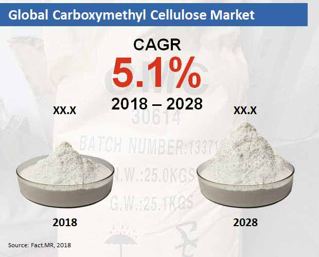 carboxymethyl cellulose market
