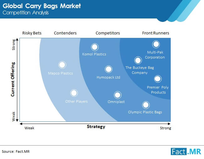 carry bags market competition analysis
