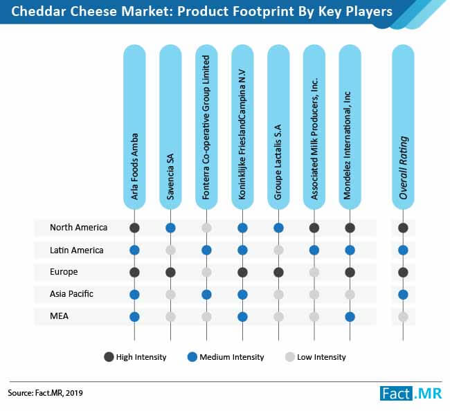 cheddar cheese market product footprint by key players