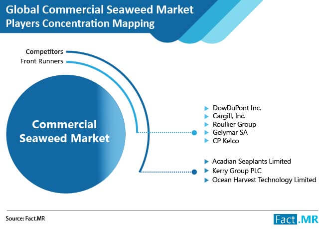 commercial seaweed images 02