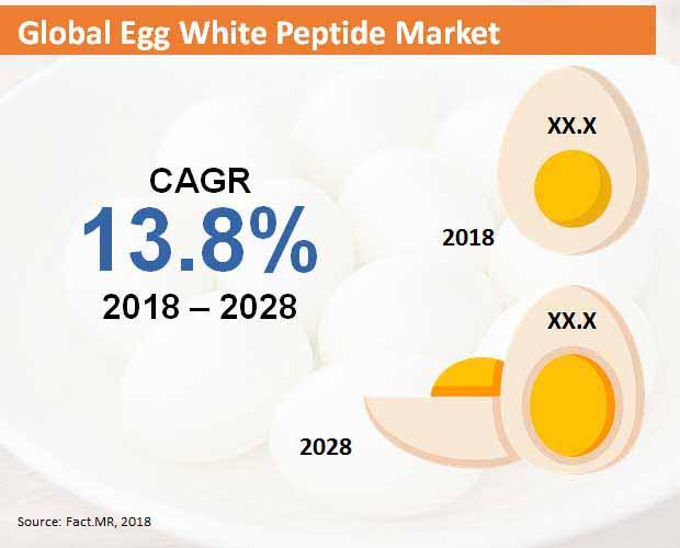 egg white peptide market