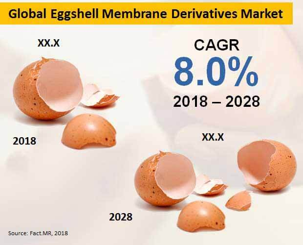 eggshell membrane derivatives market