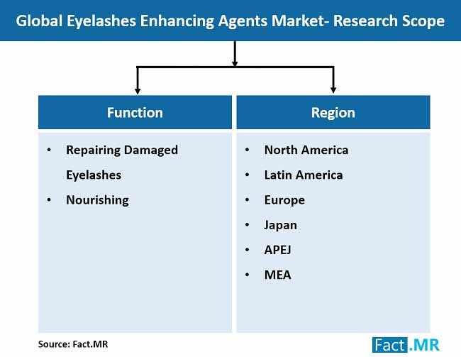 eyelashes enhancing agents market research scope