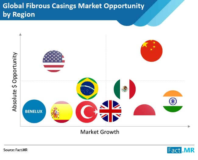 fibrous casings market 01