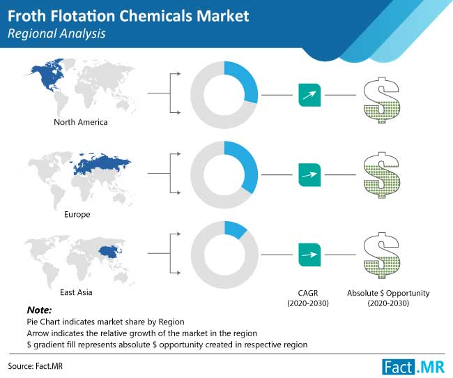 froth flotation chemicals market regional analysis