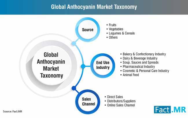 global anthocyanin market taxonomy
