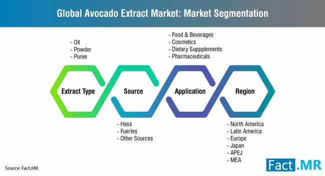global avocado extract market market segmentation