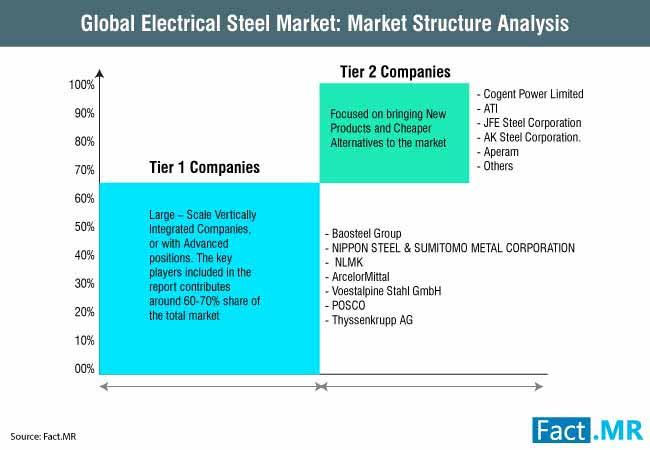 global electrical steel market market structure analysis