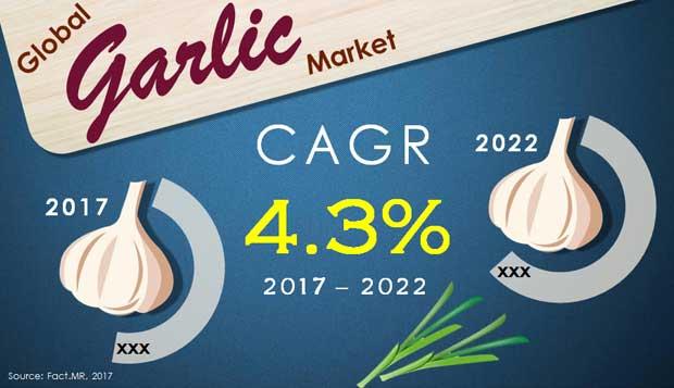 global garlic market