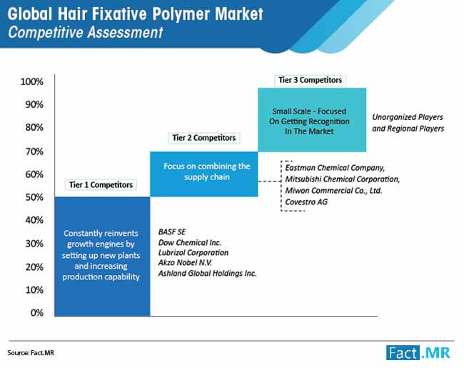global hair fixative polymer market 01