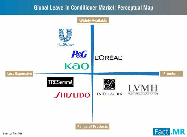 global leave in conditioner market perceptual map