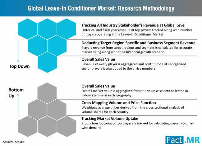 global leave in conditioner market research methodology