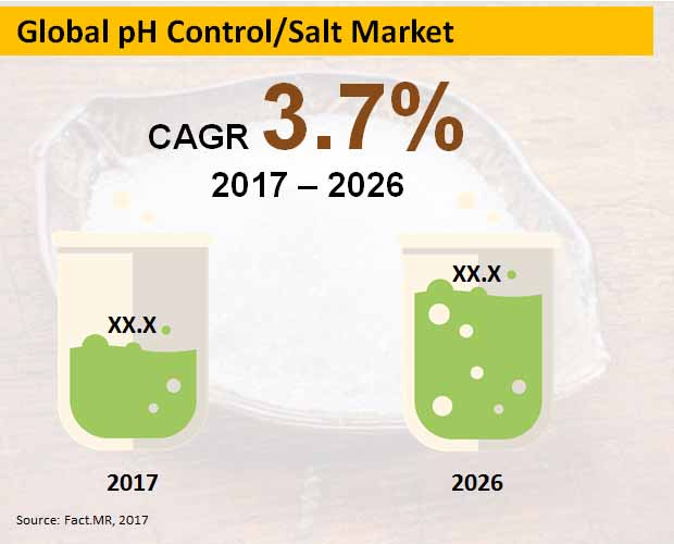 global ph control  salt market