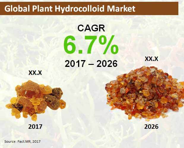global plant hydrocolloid market