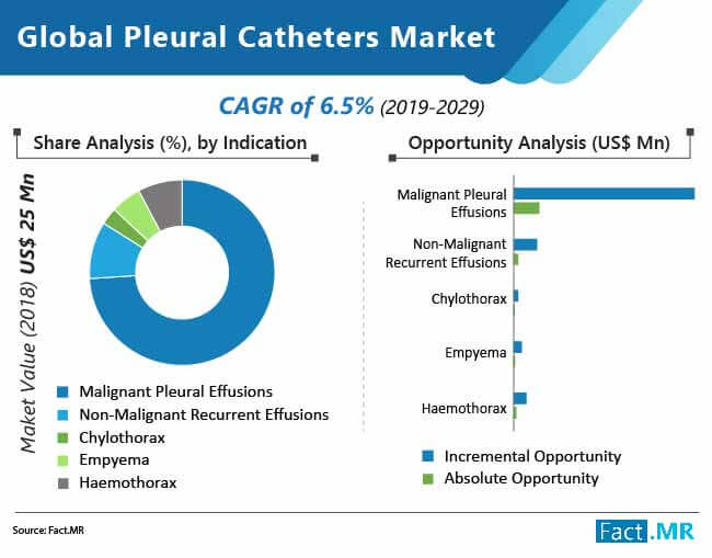 global pleural catheters market 02