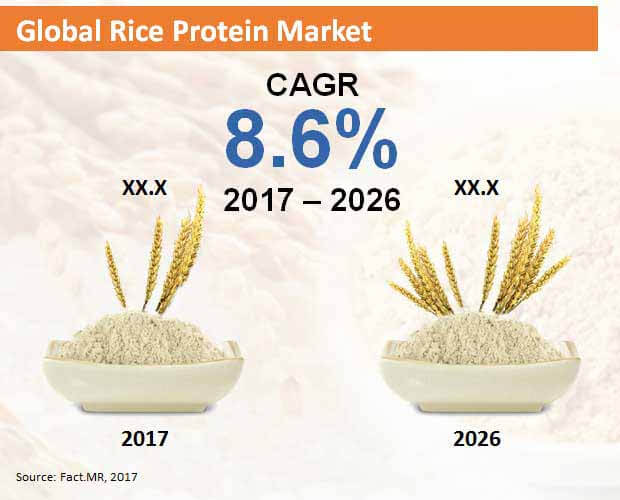 global rice protein market