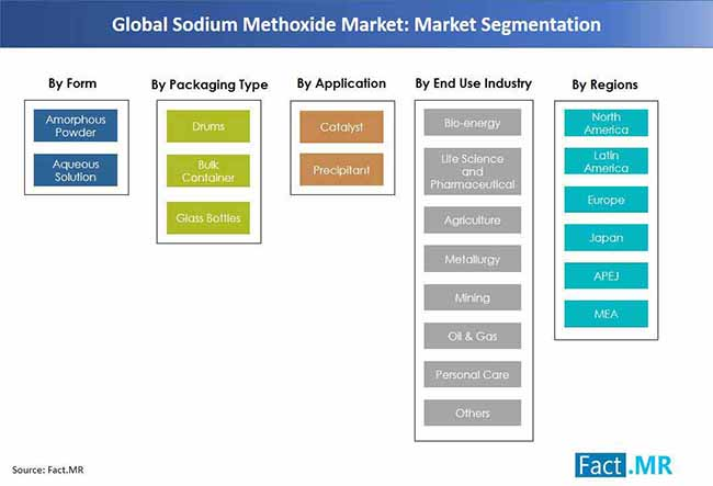 global sodium methoxide market market segmentation