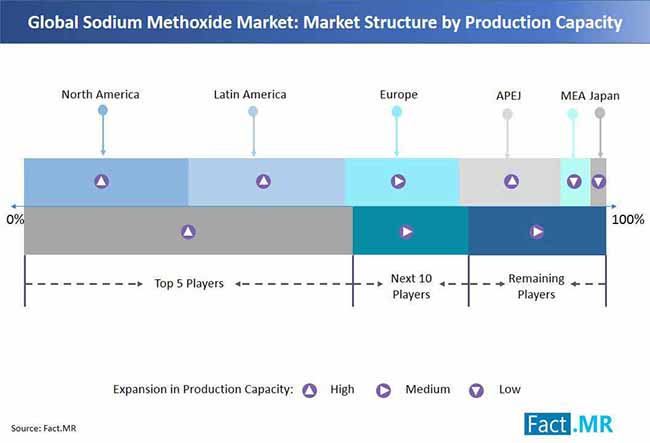 global sodium methoxide market market structure by production capacity