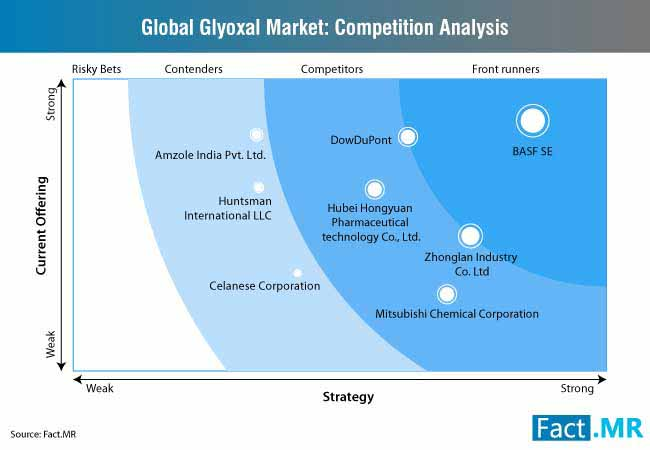 glyoxal market competition analysis