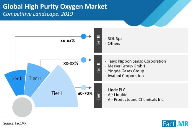 high purity oxygen market competition landscape