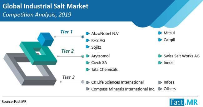 industrial salt market competition analysis