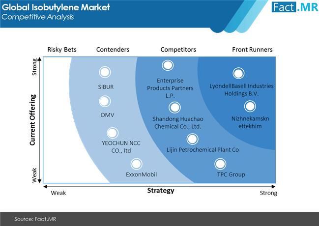 isobutylene market competitive analysis