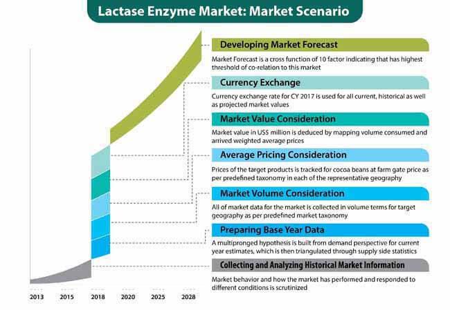 lactase enzyme market 0