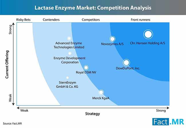 lactase enzyme market 2