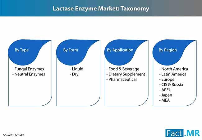 lactase enzyme market 3