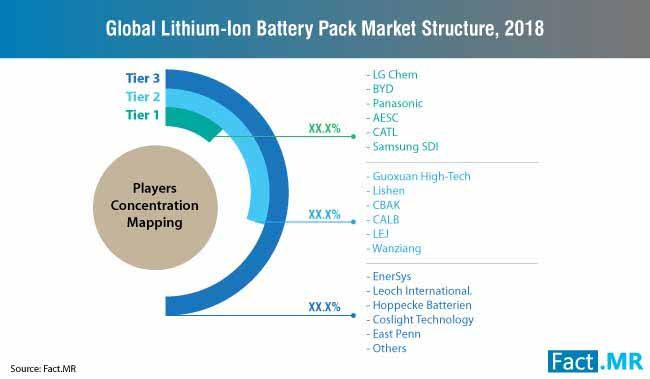 lithiumion battery pack market structure