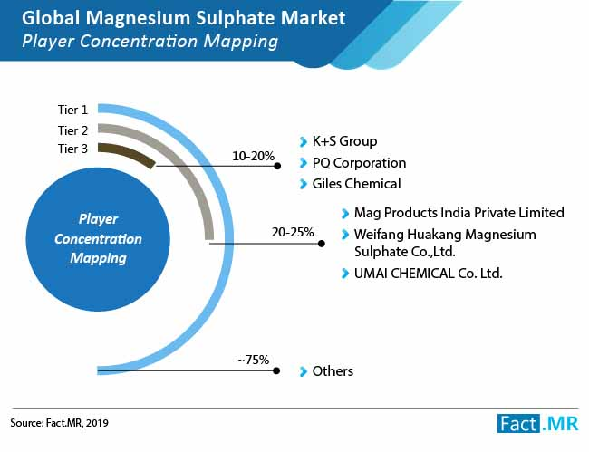 magnesium sulphate market 01