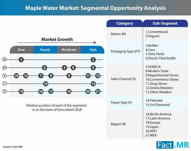 maple water market segmental opportunity analysis