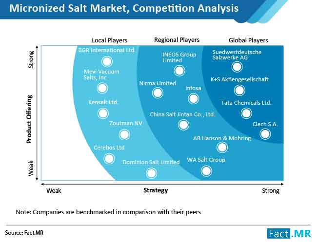micronized salt market competition analysis