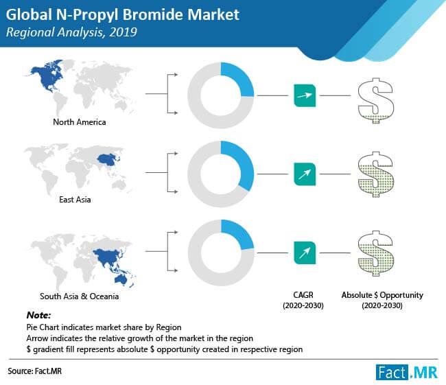 n propyl bromide market regional analysis