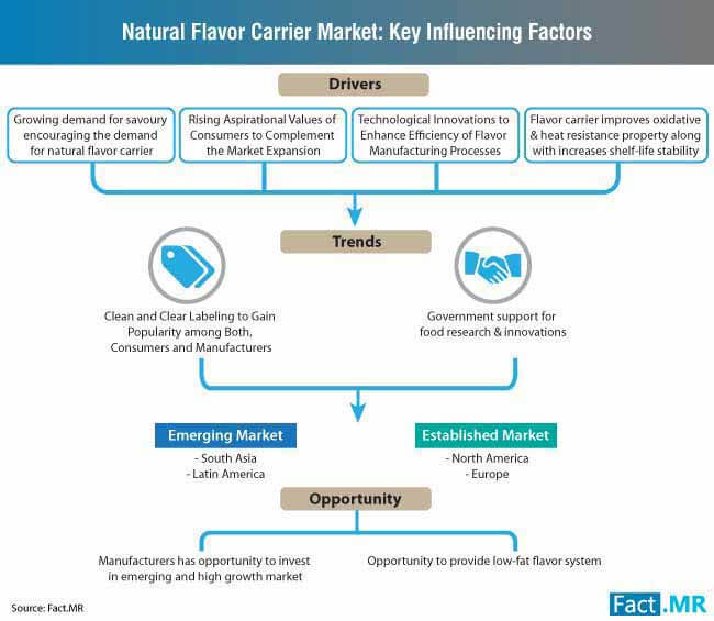 natural flavor carrier market key influencing factors