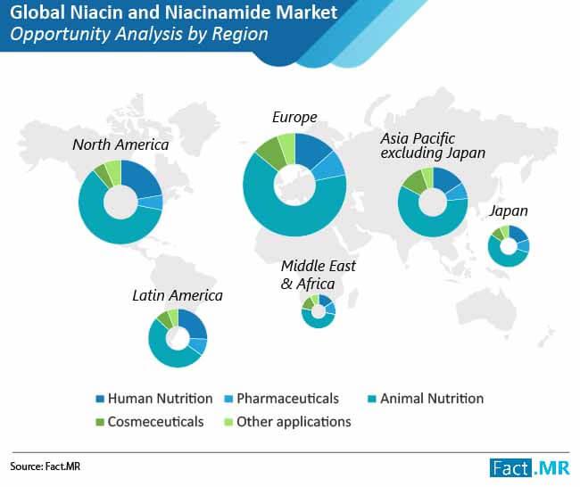 niacin and niacinamide market analysis by region