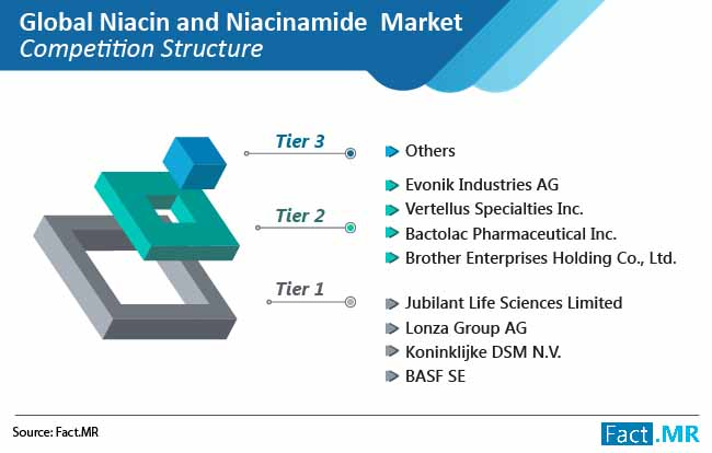 niacin and niacinamide market competation structure