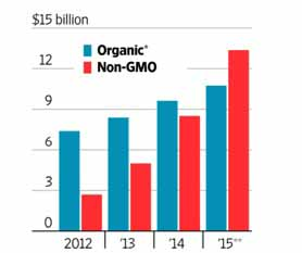 nongmo flour market