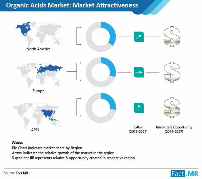 organic acids market attractiveness