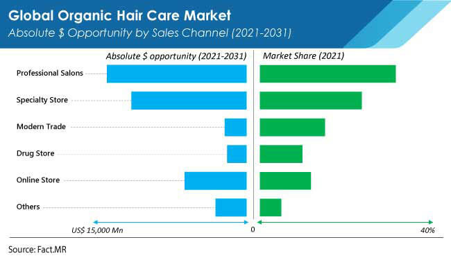 organic hair care market sales channel by FactMR