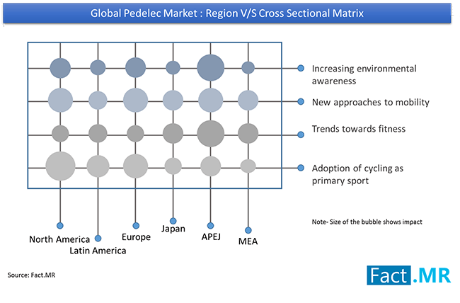 pedelec marketcross sectional matrix