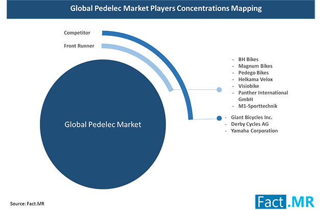 pedelec marketplayers concentrations mapping