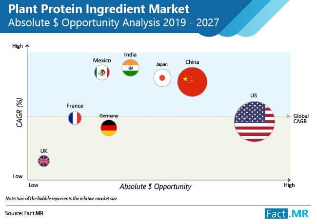 plant protein ingredient market 01